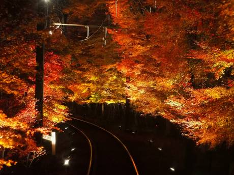 From a train window *Eizan Electric Railway* (by makiko_11)